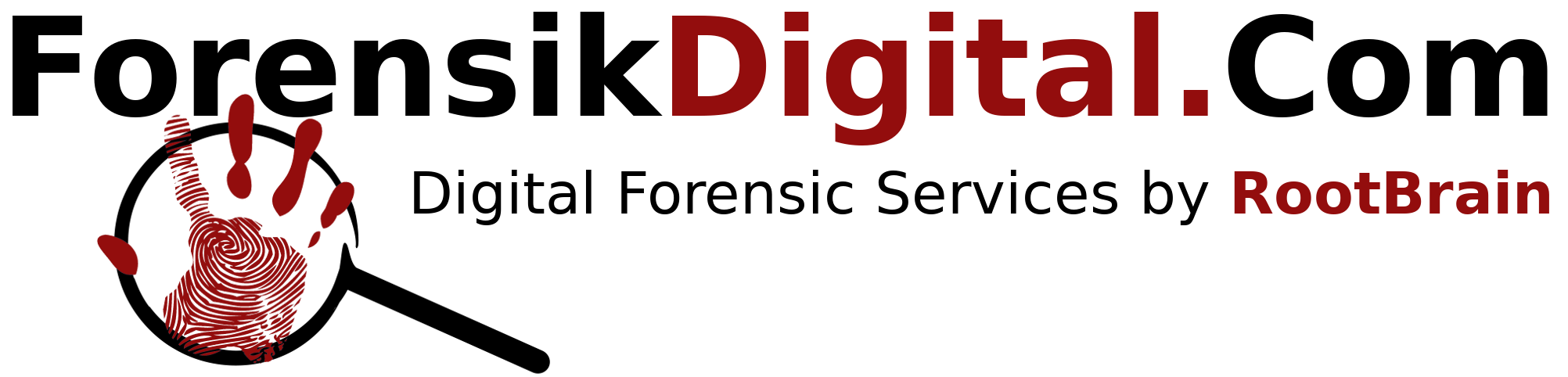 Professional Digital Forensic Consulting – Indonesia